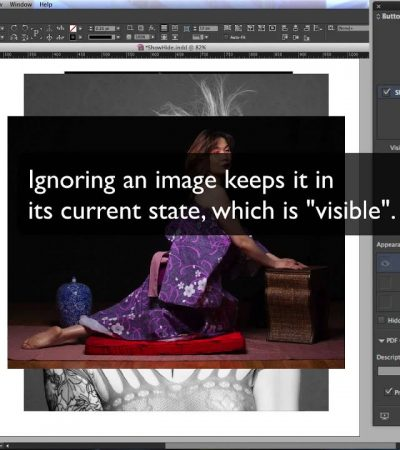Using the Show/Hide Features in InDesign